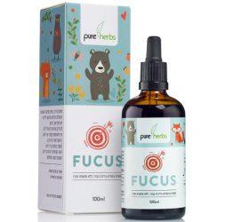 Focus-Comp